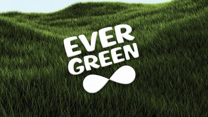 evergreen-03