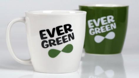 evergreen_09
